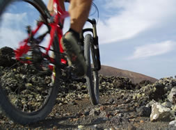 Tommys BIKES - first bike rent and bike tour company on Lanzarote